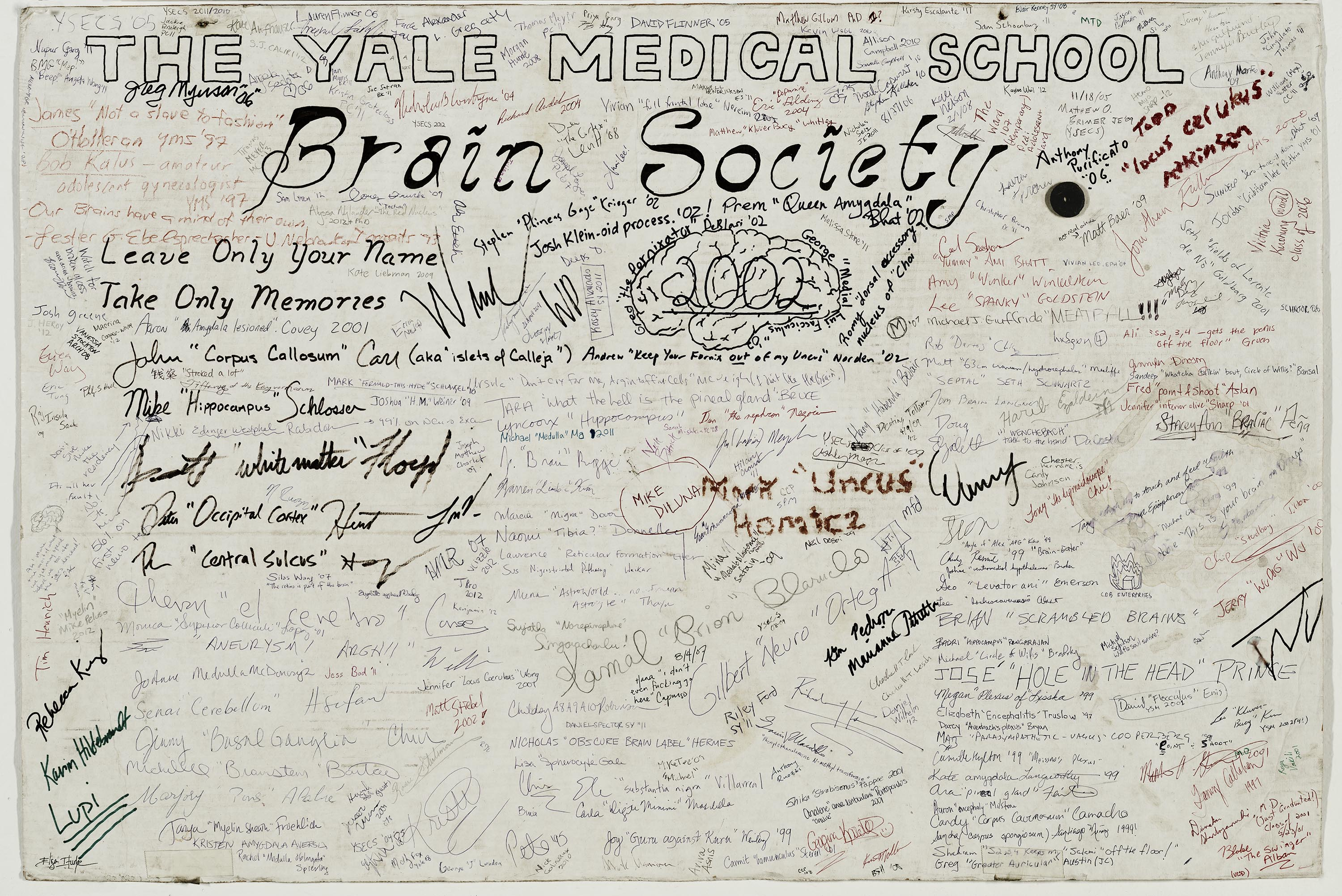 Scan of the brain society 2002